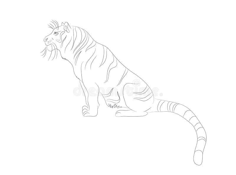 Vektorillustration eines Tigers, der sitzt, Linien zeichnend lizenzfreie abbildung
