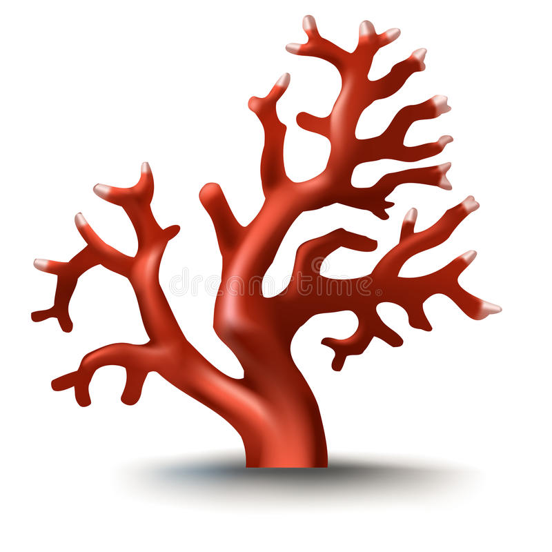 Vektorillustration, emblem, klistermärkear, röd korall i realistisk stil royaltyfri illustrationer