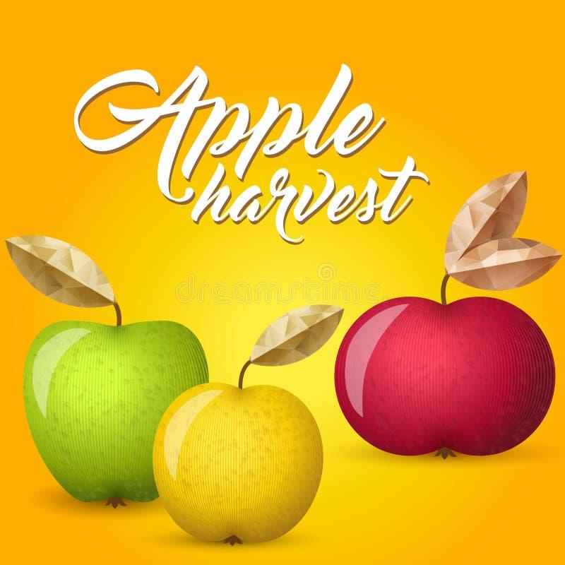 Vektorillustration för tre äpplen vektor illustrationer