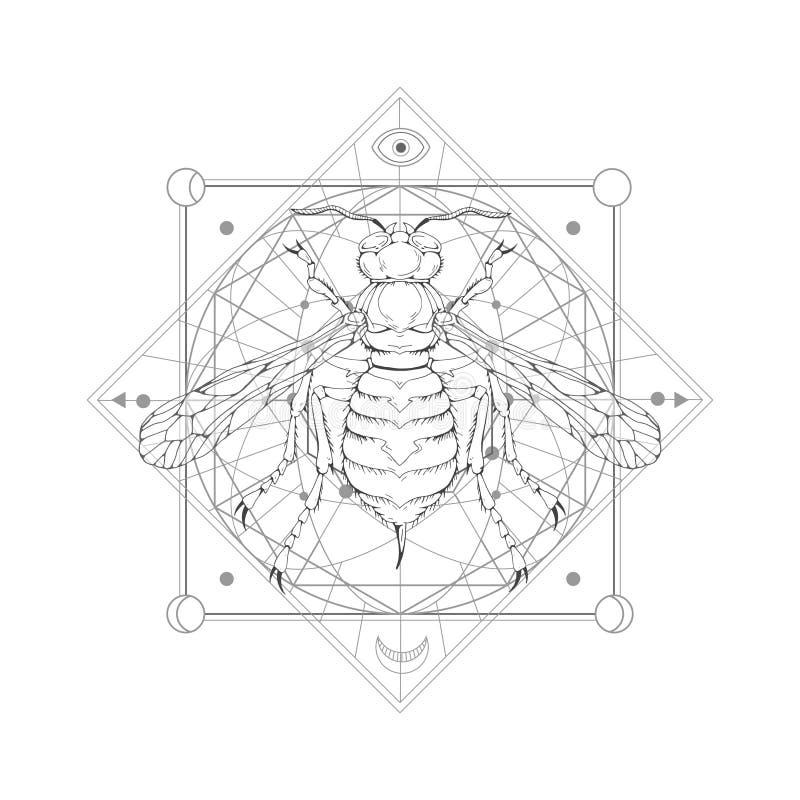 Vektorillustration med den hand drog getingen och sakralt geometriskt symbol på vit bakgrund Abstrakt mystikertecken vektor illustrationer