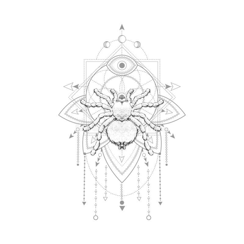 Vektorillustration med den utdragna spindeln för hand och sakralt geometriskt symbol på vit bakgrund Abstrakt mystikertecken Svar vektor illustrationer
