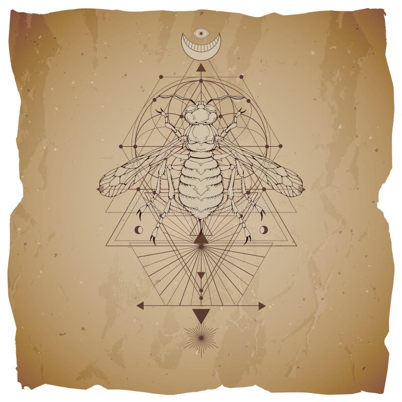 Vektorillustration mit Handgezogener Wespe und heiliges geometrisches Symbol auf Weinlesepapierhintergrund mit heftigen Rändern A stock abbildung
