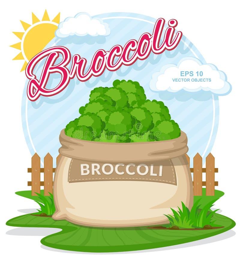 Vektorillustration von Bioprodukten Brokkoli im Leinwandsack Volle Säcke mit Frischgemüse stock abbildung