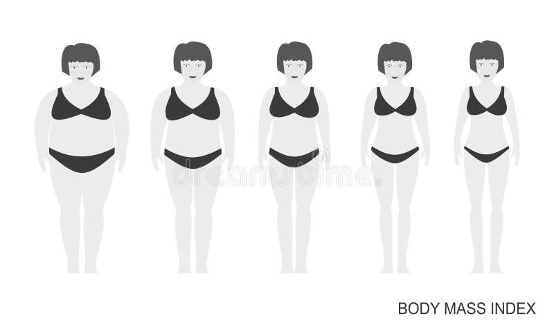 Vektorillustration von Frauenschattenbildern mit heller Haut Frauen mit unterschiedlichem Gewicht von normalem zu extrem beleibte stock abbildung