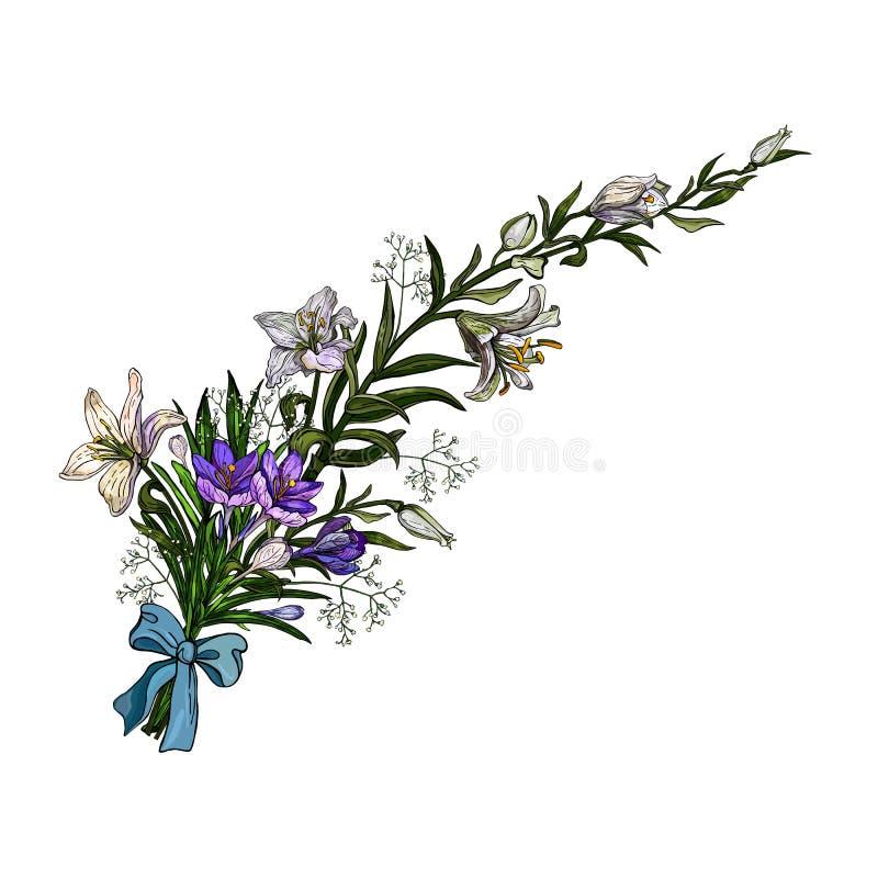 Vektorillustration von Ostern-Blumenbündeloflilies und -krokussen mit dem Bogen in der Weinleseart lokalisiert auf weißem Hinterg lizenzfreie abbildung