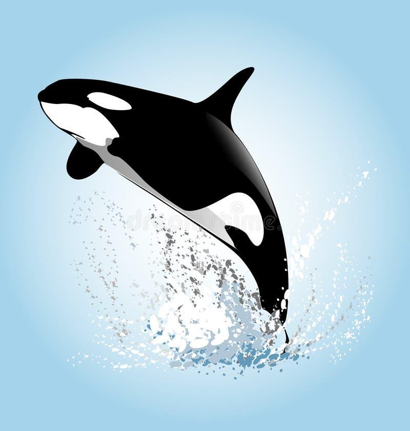 Vektorillustration von Schwertwalen eines Springens stock abbildung
