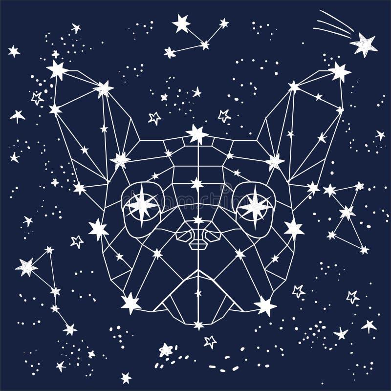 Vektorillustrationen av den linjära polygonal hunden för magisk zodiak i utrymme bland skissar handen drog stjärnor, djurkonstell vektor illustrationer