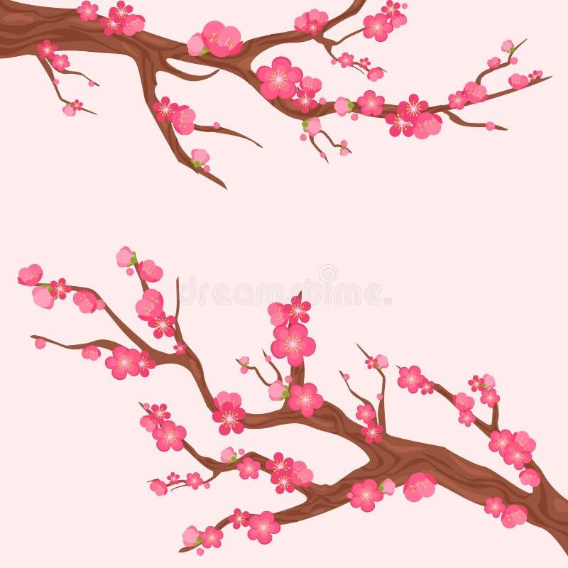 Vektorillustrationen av Japan den körsbärsröda filialen med att blomma blommar Sakura förgrena sig med lotten av härliga blommor  stock illustrationer