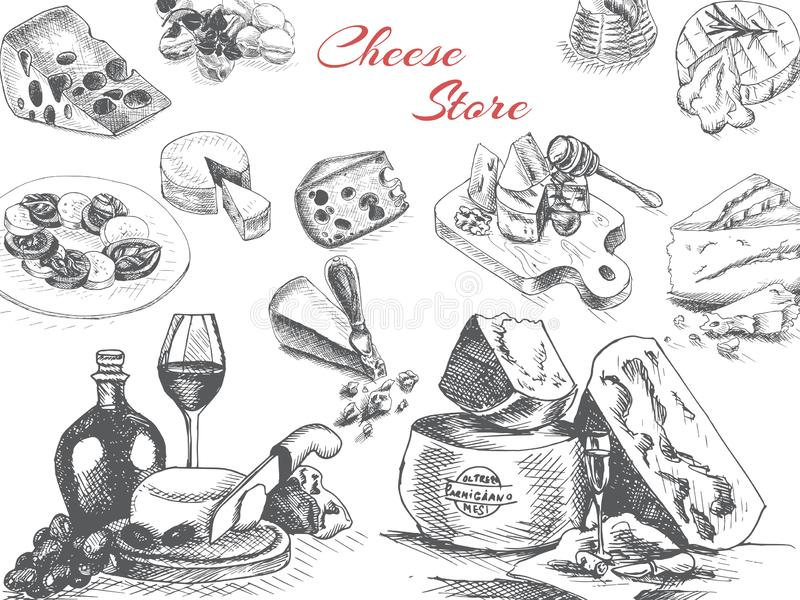 Vektorillustrationen skissar - ost provolone cheddar, edam, Parmigiano, cheddar, parmesan, camembert, brie, mozzarella vektor illustrationer