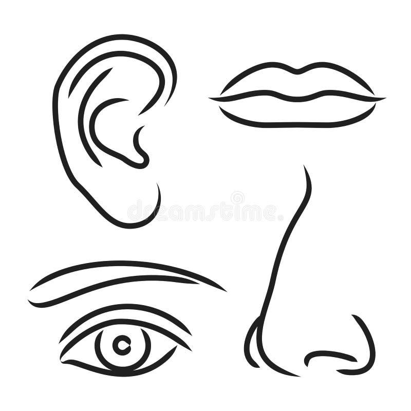 Vektorillustrationnäsa, öra, mun och öga stock illustrationer