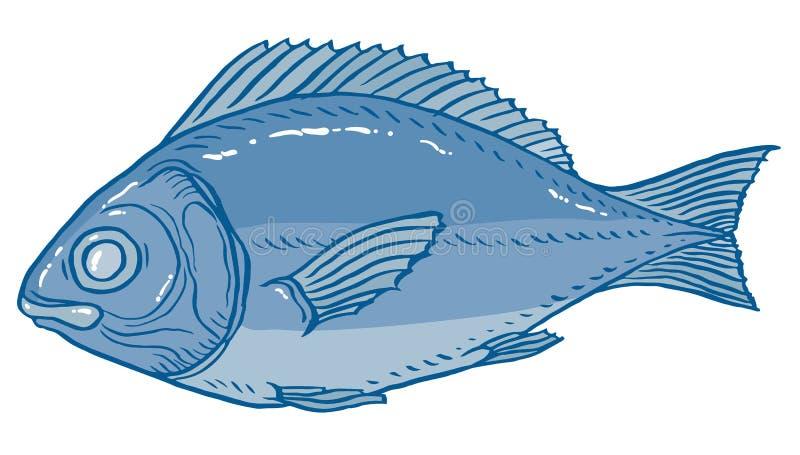 Vektorillustrationsfische stock abbildung