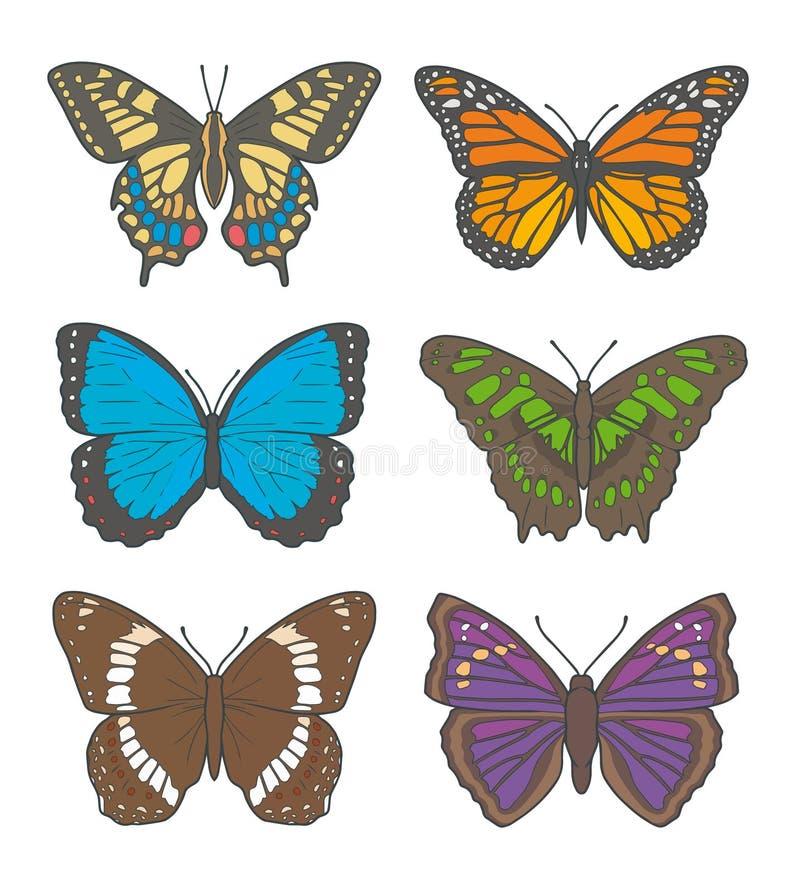 Vektorillustrationteckningar av olika fjärilar, inklusive 'den vita amiralen ', 'gammal värld Swallowtail ', 'monarkfjäril ', stock illustrationer
