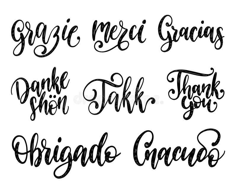 Vektorkalligraphiesatz der unterschiedlichen Sprachübersetzung von Thank Sie Handbeschriftung des internationalen Dankbarkeitswor vektor abbildung