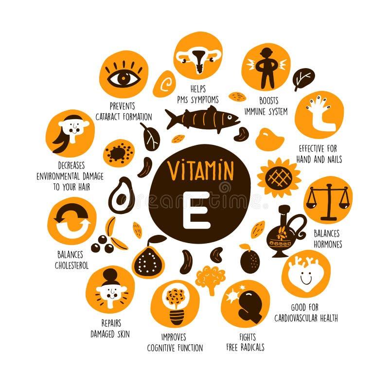 Vektorkarikaturillustration von Quellen und von Informationen des Vitamins E über sie fördert vektor abbildung