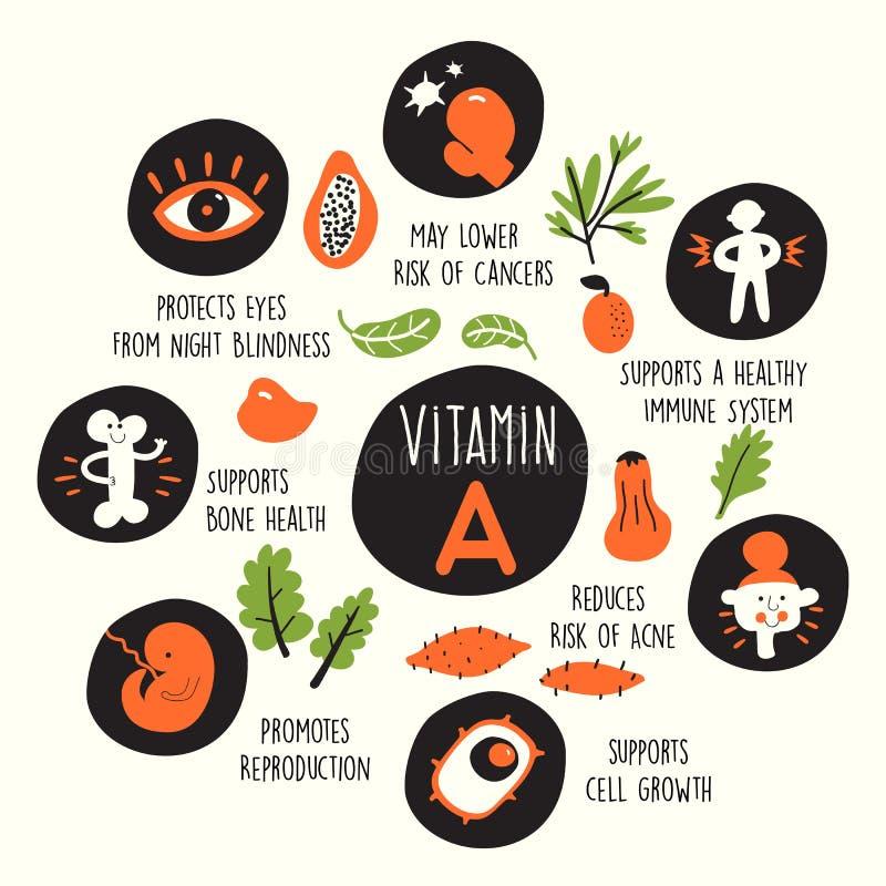 Vektorkarikaturillustration von Vitamin- Aquellen und -informationen über sie fördert stock abbildung