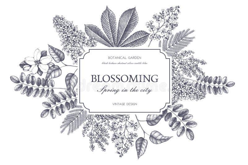 Vektorkartenentwurf mit Hand gezeichneten blühenden Bäumen Blumenhochzeitseinladungsschablone vektor abbildung
