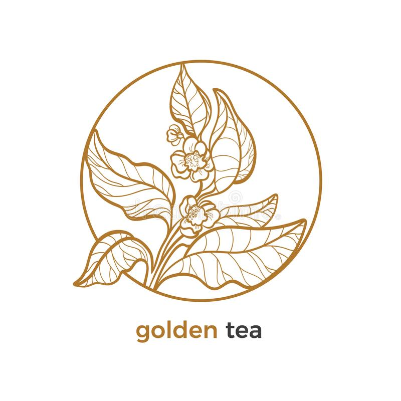 Vektorklistermärke av teträdet Logo med sidor, blomma royaltyfri illustrationer