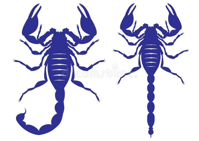 Vektorkontur av en skorpion royaltyfri illustrationer