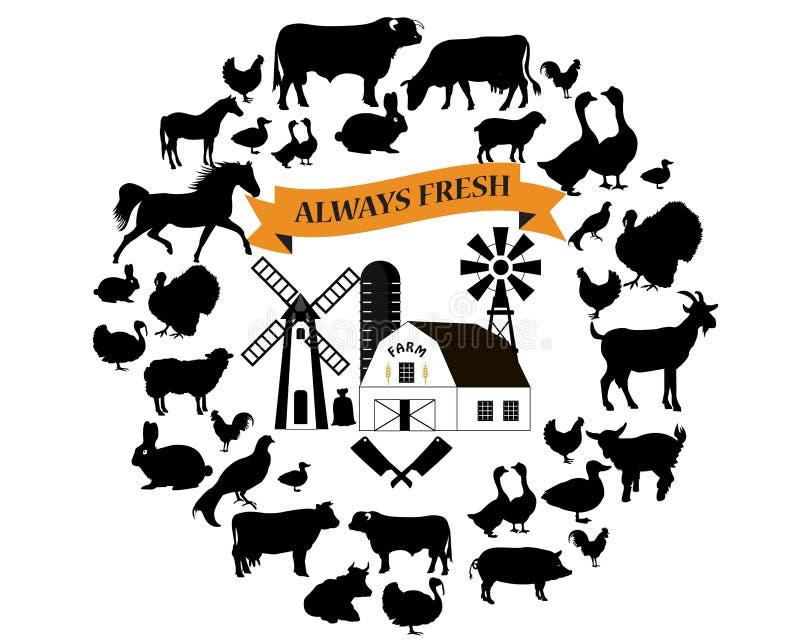 Vektorlantgård- och lantbruksymboler och designbeståndsdelar Samling för lantgårddjur vektor illustrationer
