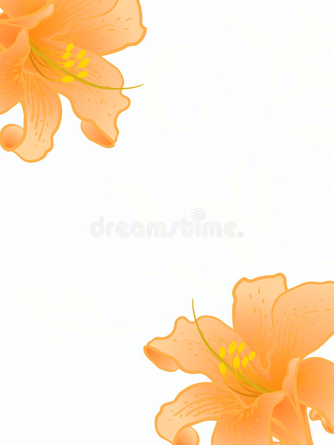 Vektorlilien. lizenzfreie abbildung