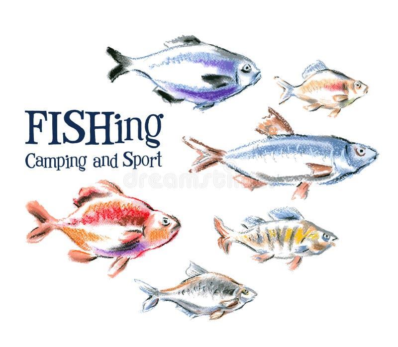 Vektorlogo-Designschablone der frischen Fische Meeresfrüchte lizenzfreie abbildung