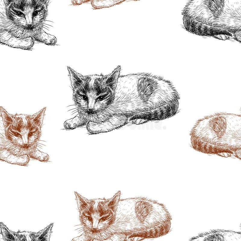 Vektormodellen av skissar av kattungar vektor illustrationer