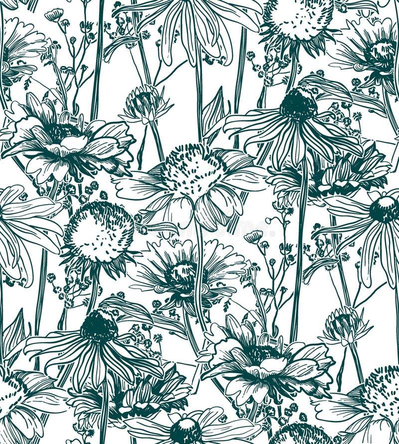 Vektormusteranlage gravieren Tintenwiesenblumen lizenzfreie abbildung