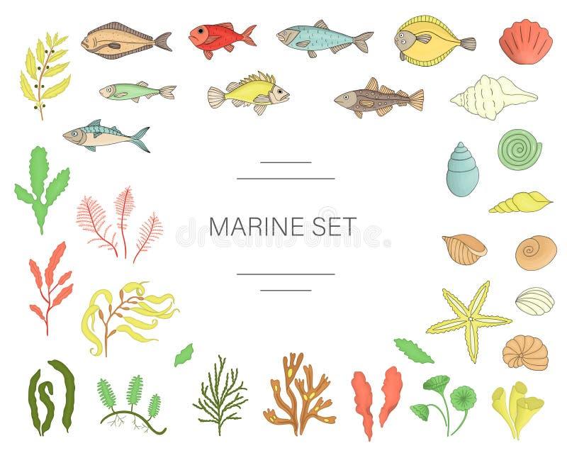 Vektorn färgade uppsättningen av fisken, havsskal, havsväxter som isolerades på vit bakgrund stock illustrationer