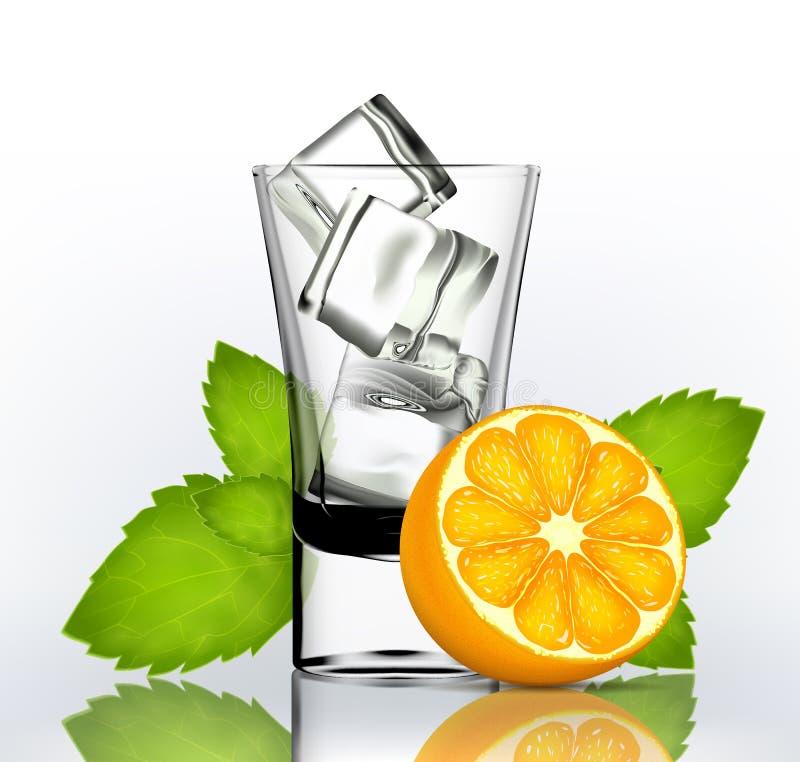 Vektorn sköt exponeringsglas med is, mintkaramellen och apelsinen vektor illustrationer