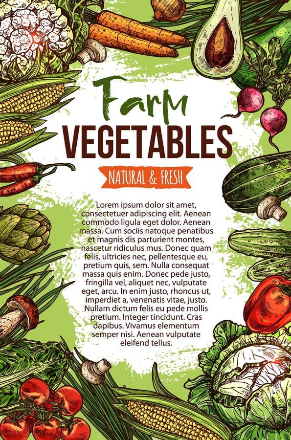 Vektorn skissar affischen av naturliga lantgårdgrönsaker vektor illustrationer
