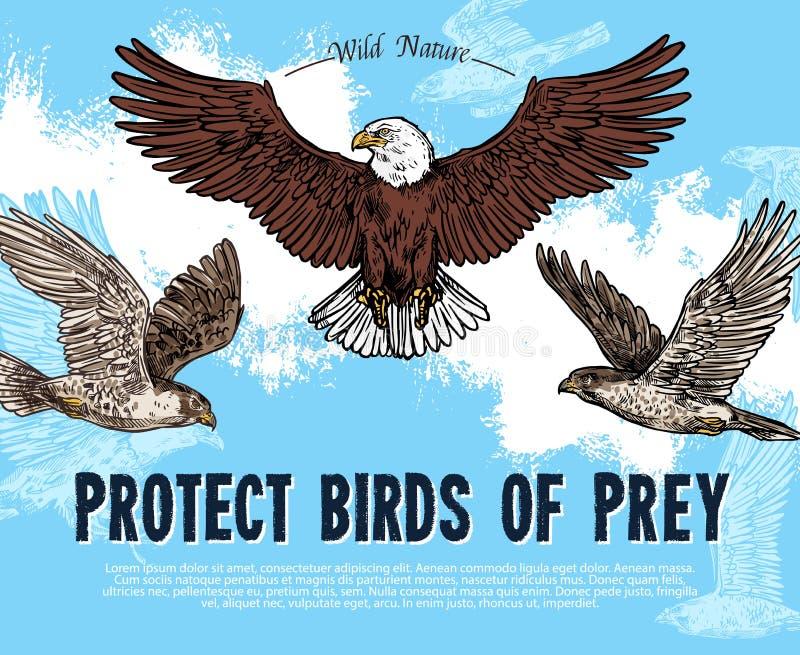 Vektorn skissar affischen för fåglar av rovskydd stock illustrationer