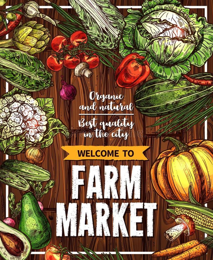 Vektorn skissar affischen för grönsaklantgårdmarknaden stock illustrationer