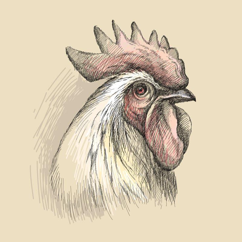 Vektorn skissar av tupp- eller hanehuvudprofil i svart på den pastellfärgade beigea bakgrunden Kontur av tuppen i grafisk stil royaltyfri illustrationer
