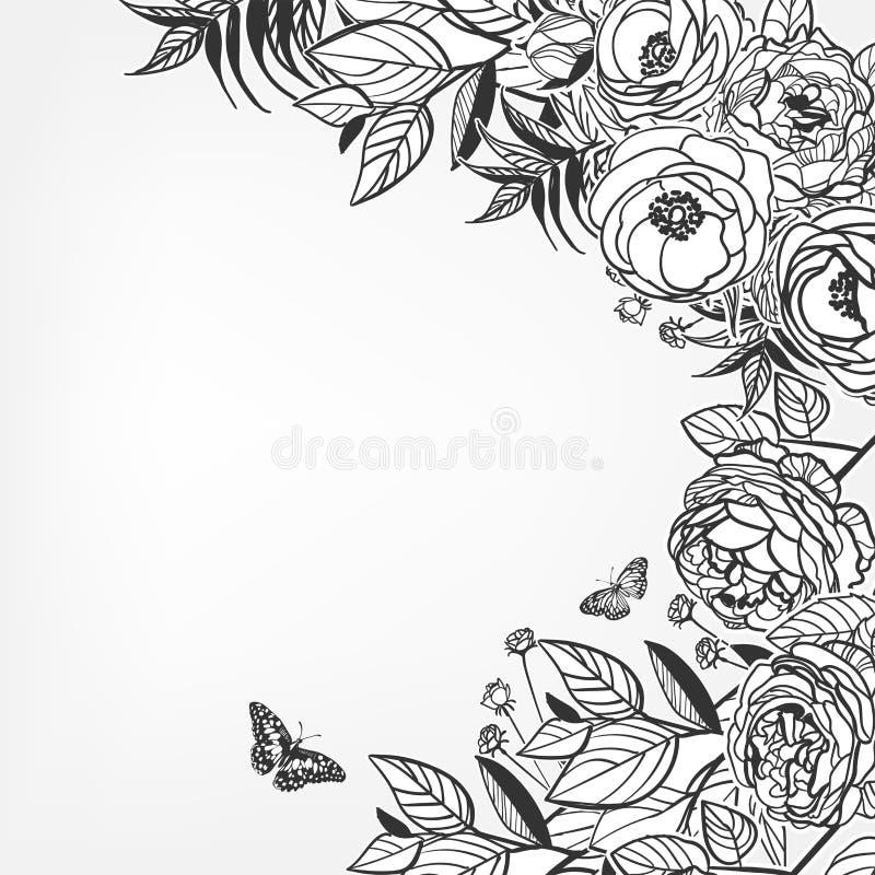 Vektorn skissar blommabakgrundskortet steg pions stock illustrationer