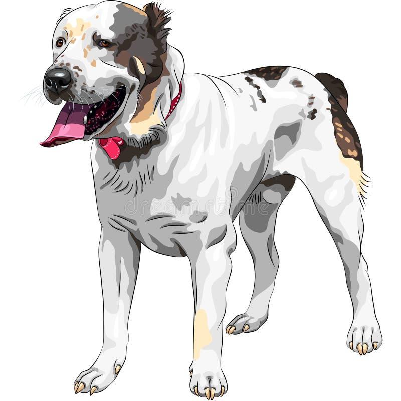 Vektorn skissar för herdehunden för hunden den centrala asiatiska aveln stock illustrationer
