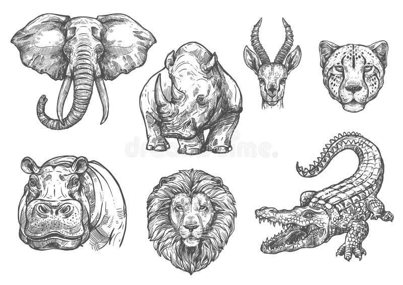 Vektorn skissar lösa afrikanska djursymboler för zoo royaltyfri illustrationer