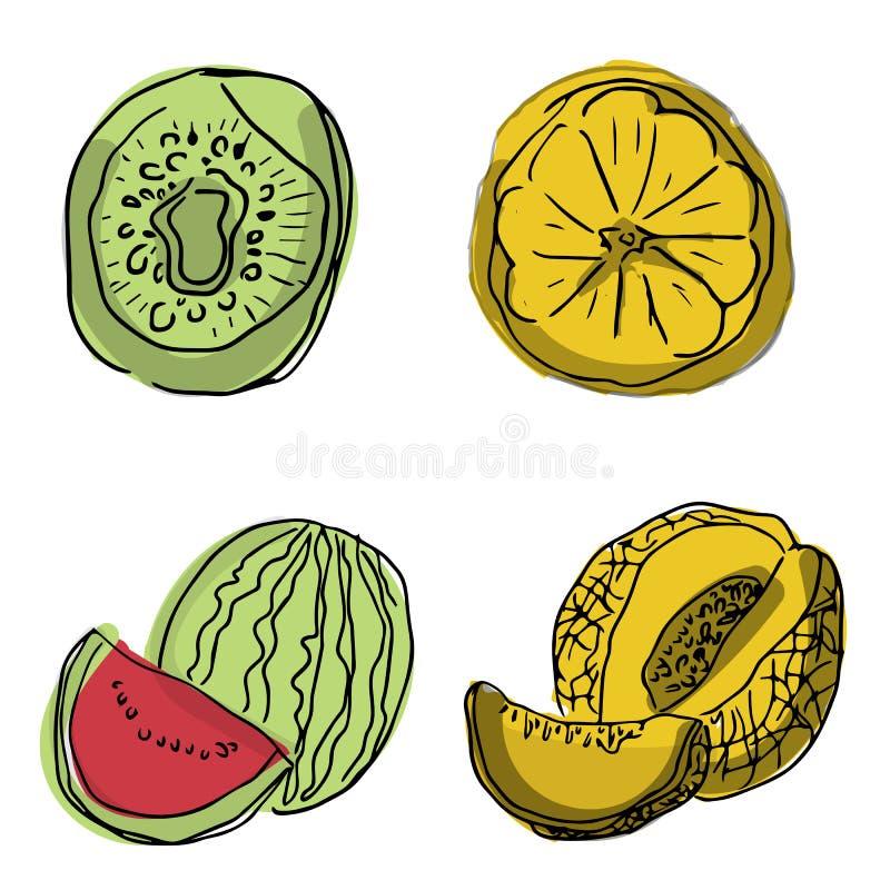 Vektorn ställde in av fruktskivor: vattenmelon frukt, kiwi, ananas, grapefrukt, äpple Samling av sommarmat Nya frukter är royaltyfri fotografi