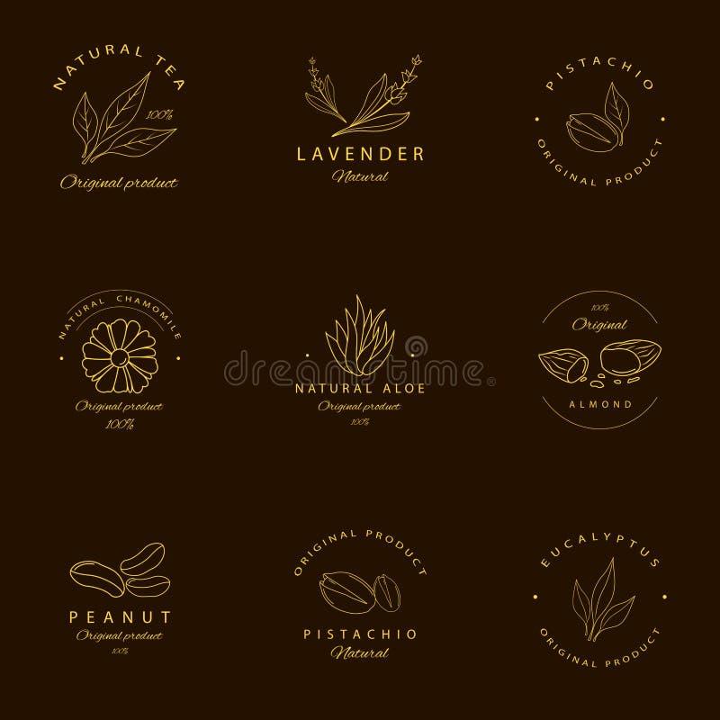 Vektorn ställde in av guld- mallar och emblem för förpackande design Argan, aloe, jordnöt, mandel, eukalyptus, te, kamomill och p royaltyfri illustrationer