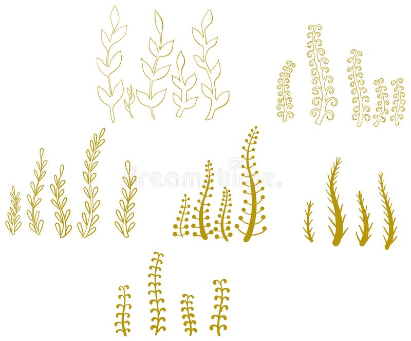 Vektorn ställde in av höstgräs och blommor royaltyfri illustrationer