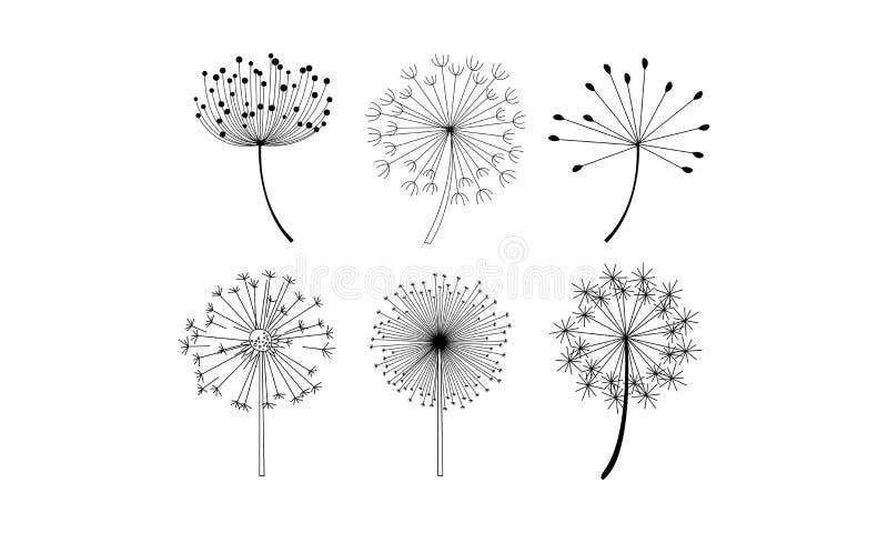 Vektorn ställde in av maskrosblommor med fluffigt frö Naturliga dekorativa beståndsdelar i linjär stil stock illustrationer