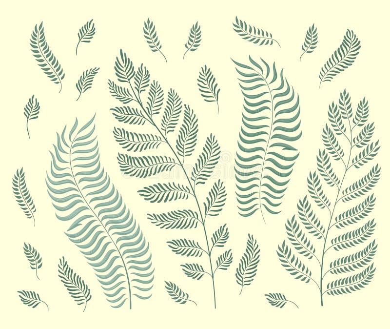 Vektorn ställde in av trädgårdörter som isolerades på retro grön bakgrund vektor illustrationer