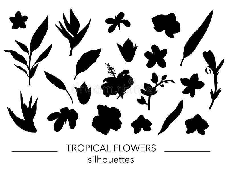 Vektorn ställde in av tropiska sida- och blommakonturer royaltyfri illustrationer