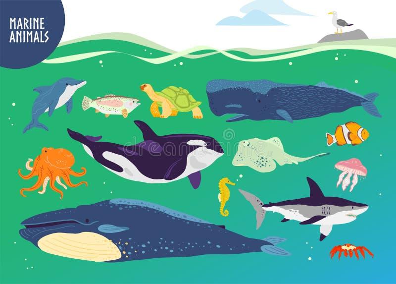 Vektorn ställde in av utdragna gulliga marin- djur för plan hand: val delfin, fisk, haj, manet vektor illustrationer