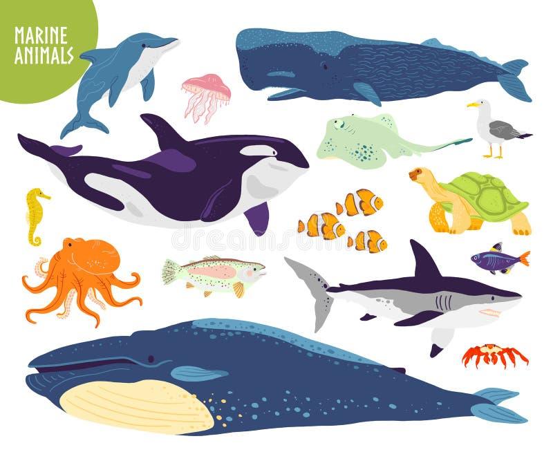Vektorn ställde in av utdragna gulliga marin- djur för plan hand: val delfin, fisk, haj, manet stock illustrationer