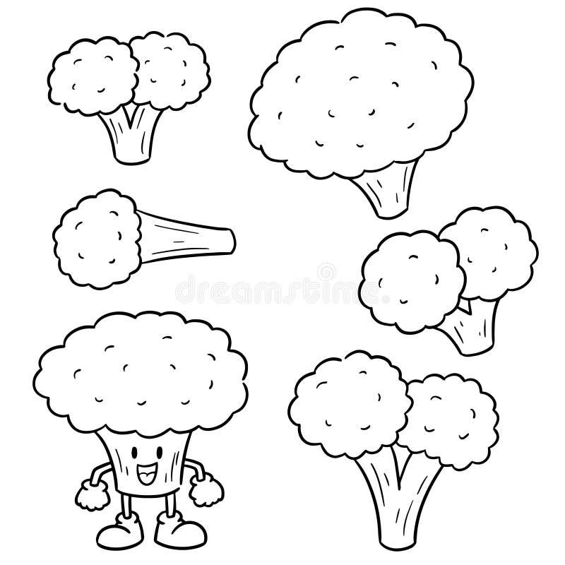 Vektorn st?llde in av broccoli vektor illustrationer