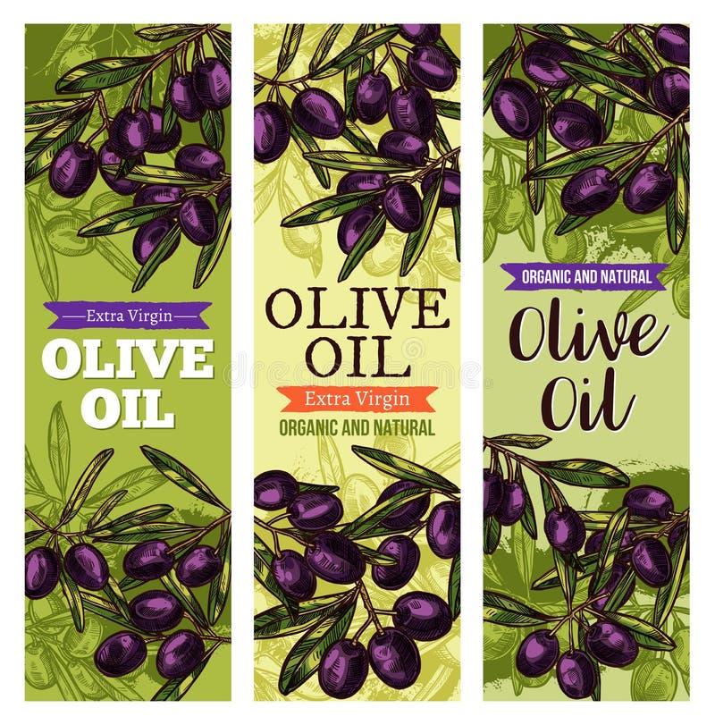 Vektorolivgruppen skissar baner för olivolja vektor illustrationer