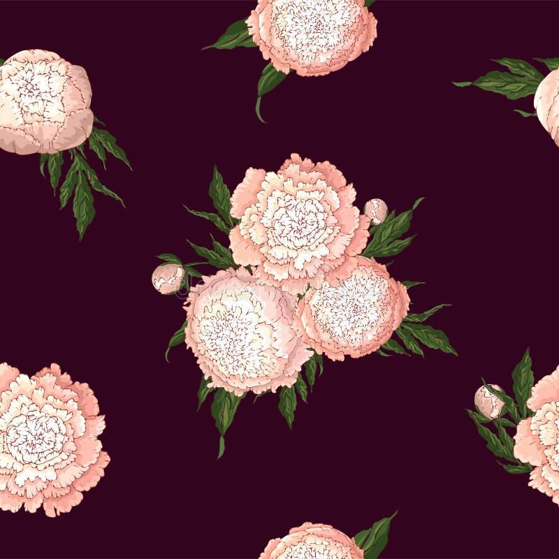 Vektorpfingstrosen Nahtloses Muster von hellrosa Blumen Blumensträuße von Blumen auf Burgunder-Hintergrund Schablone für Blumende vektor abbildung