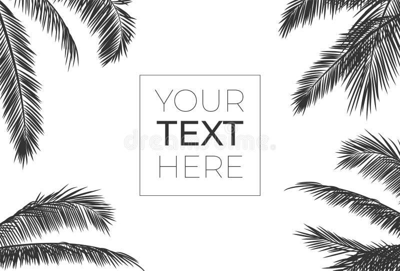 Vektorrahmen mit realistischen Palmblättern Schwarzes Schattenbild mit Platz für Ihren Text auf Weiß lokalisierte Hintergrund vektor abbildung