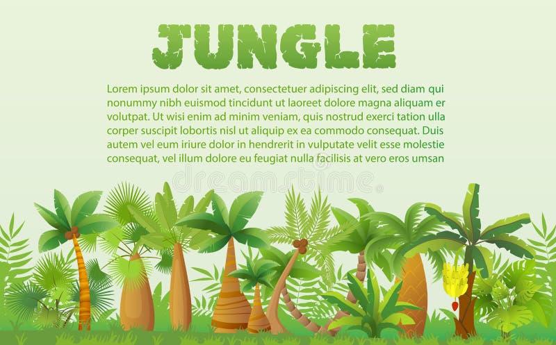 VektorRainforestpalmträd med annat tropiskt exotiskt växtlandskap Frodigt skogdjungelträd royaltyfri illustrationer
