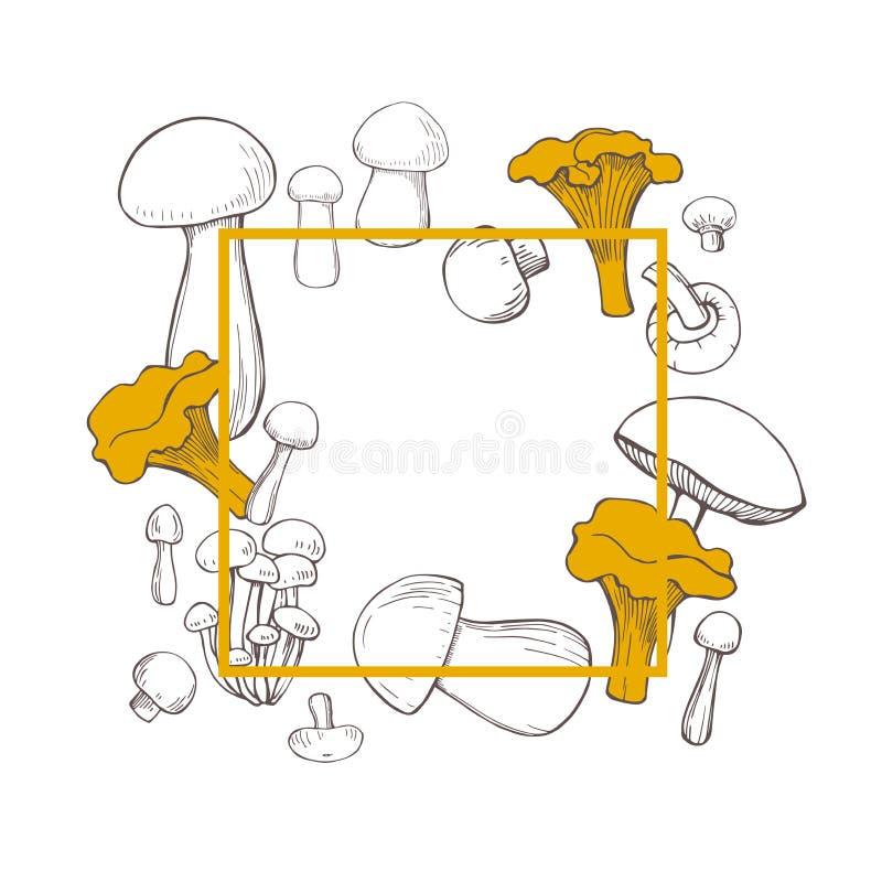 Vektorram med utdragna champinjoner för hand Skissa illustrationen royaltyfri illustrationer